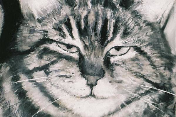 Close Up Of Tabby Cat Art Print featuring the painting El Gato by Billie Colson