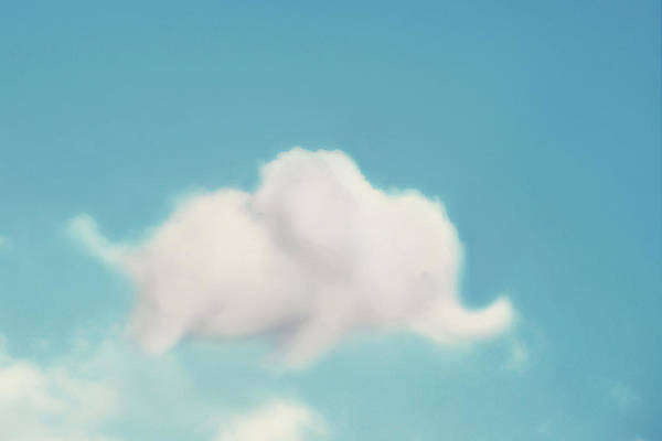 Cloud Photography Art Print featuring the photograph Elephant In The Sky by Amy Tyler
