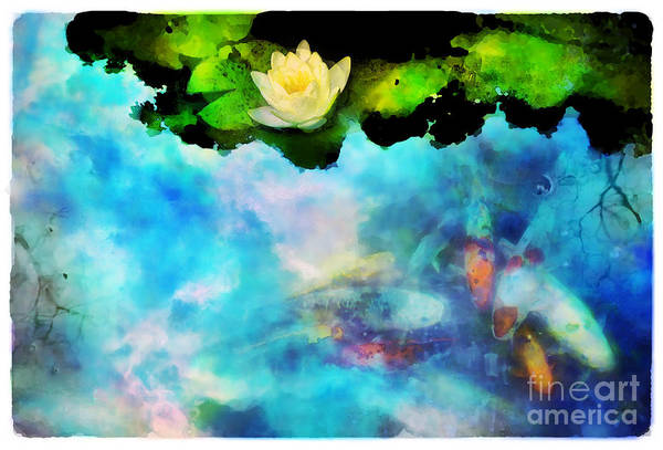Koi Art Print featuring the photograph Evening Reflections by Gina Signore