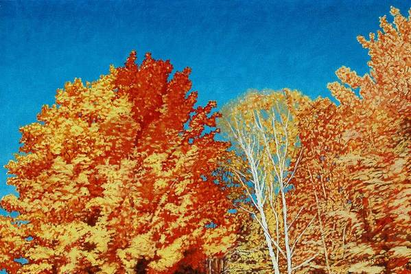 Fall Color Art Print featuring the painting Fall by Allan OMarra