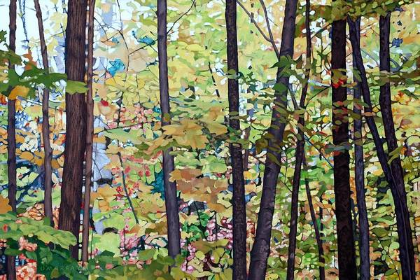 Landscape Art Print featuring the painting Fall Colour Medley by Allan OMarra