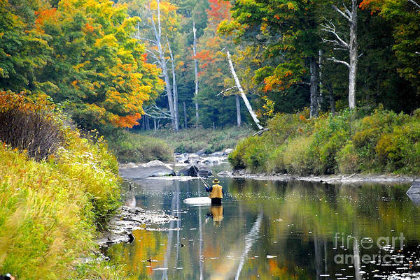 Fall Art Print featuring the photograph Fall Fishing by David Lee Thompson