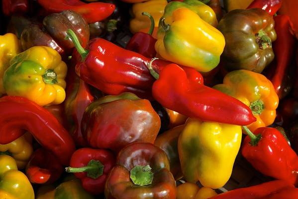 Peppers Art Print featuring the photograph Farmers Market Bounty by Michaele Boncaro