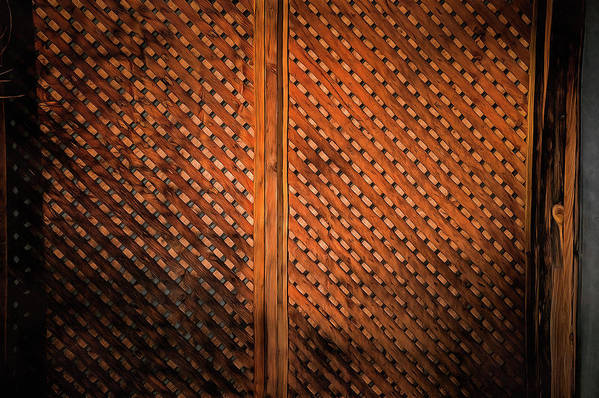 Art Print featuring the photograph Fence #2 by Chroma Photographer
