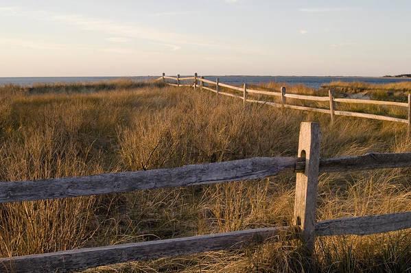 Krauzyk Art Print featuring the photograph Fence Along The Dunes - Madaket - Nantucket by Henry Krauzyk