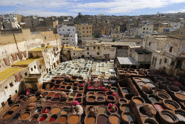 Morocco Art Print featuring the photograph Fez Morocco by Liz Pinchen