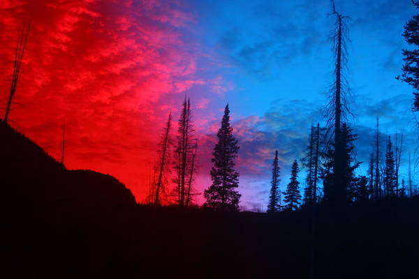 Nature Art Print featuring the photograph Fire And Ice by Julia Mason