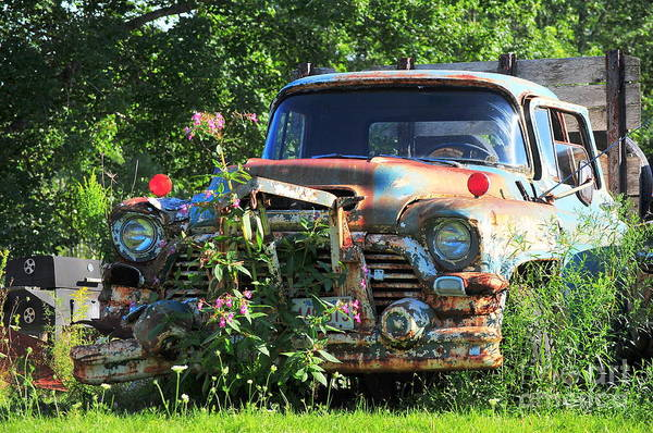 New England Art Print featuring the photograph Fixer Upper by Catherine Reusch Daley