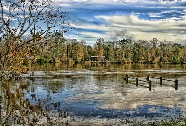 Alabama Art Print featuring the photograph Floodwaters by Patricia Montgomery