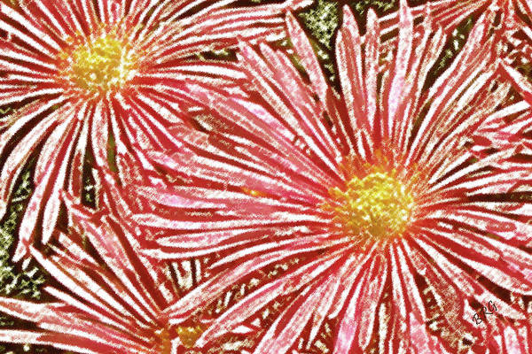 Ice Plant Flowers Art Print featuring the photograph Floral Design No 1 by Ben and Raisa Gertsberg