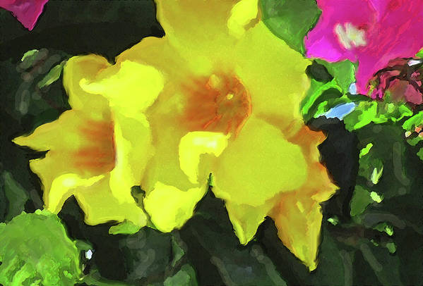 Flowers Art Print featuring the photograph Flowers On Deck by Ian MacDonald