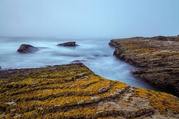 Landscape Art Print featuring the photograph Fog And The Sea by Jonathan Nguyen