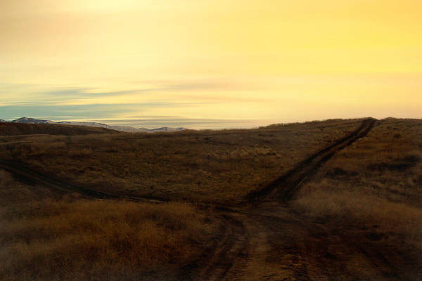 Nature Art Print featuring the photograph Fork In The Road by Michael Draper