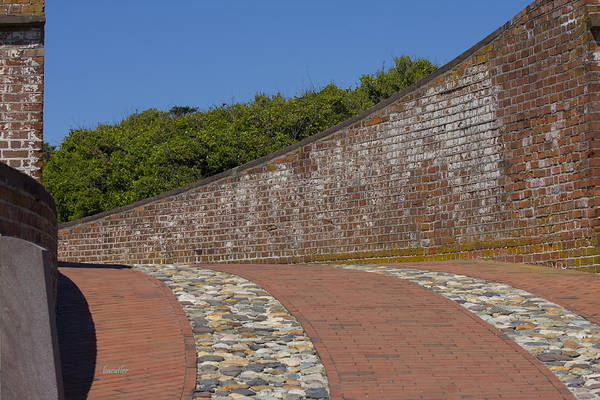 Harkers Island Art Print featuring the photograph Fort Macon by Betsy Knapp