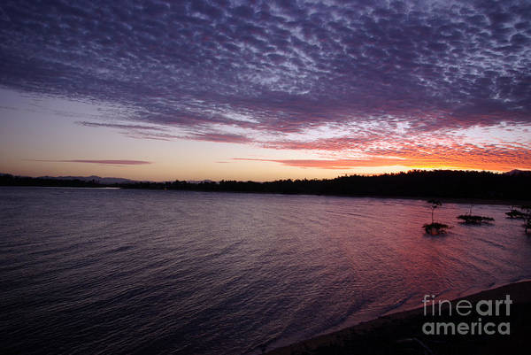 Landscape Art Print featuring the photograph Four Elements Sunset Sequence 4 Coconuts Qld by Kerryn Madsen- Pietsch
