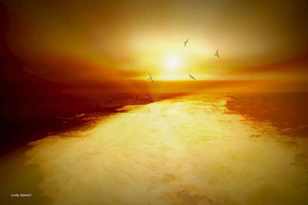Ocean Print featuring the photograph Freedom Escape by Linda Sannuti