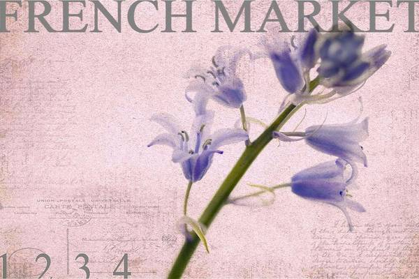 Market Art Print featuring the photograph French Market Series A by Rebecca Cozart