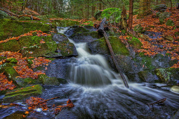 Autumn Art Print featuring the photograph Fresh Water by Evelina Kremsdorf