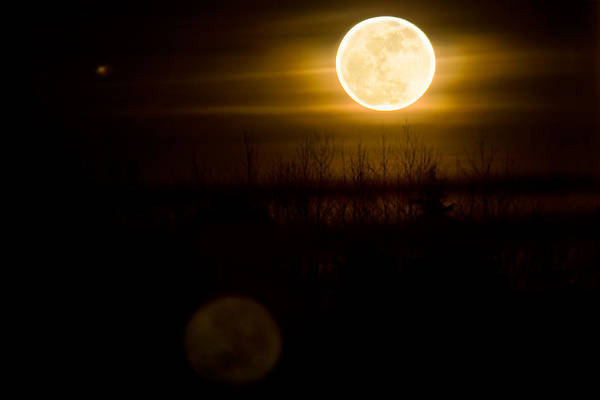 Moon Art Print featuring the photograph Full Moon Rise by Naman Imagery