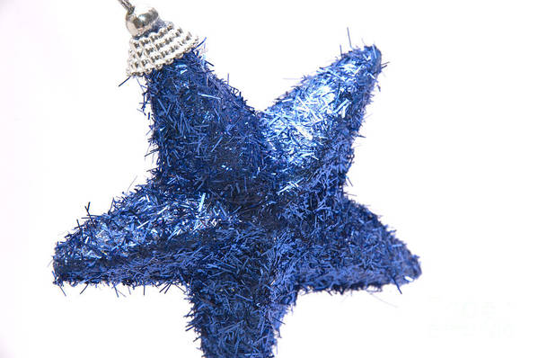 Star Art Print featuring the photograph Furry Christmas Star by Andy Smy