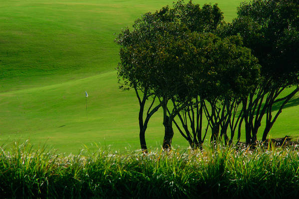 Abstract Art Print featuring the photograph Golf Course Abstract by Colin Radford