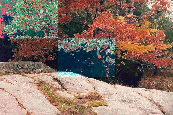 Landscape Art Print featuring the photograph Granite Outcrop And Fall Leaves Aep2 by Lyle Crump