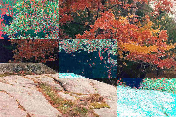 Landscape Art Print featuring the photograph Granite Outcrop And Fall Leaves Aep3 by Lyle Crump