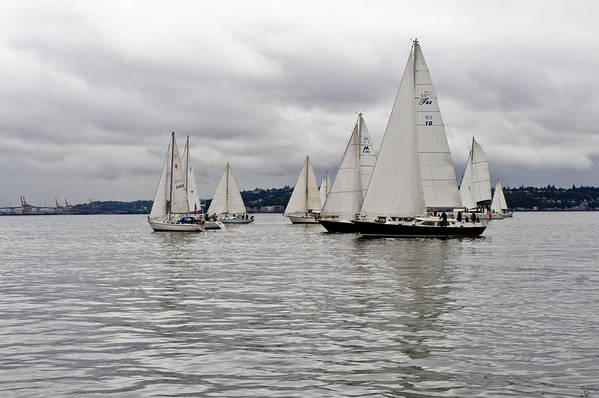 Sail Art Print featuring the photograph Gray Day In Seattle by Tom Dowd