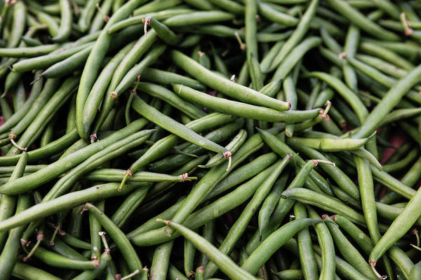 Food Art Print featuring the photograph Green Beans by Kendra Susan