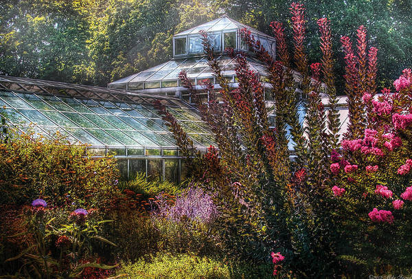 Savad Art Print featuring the photograph Greenhouse - The Greenhouse by Mike Savad