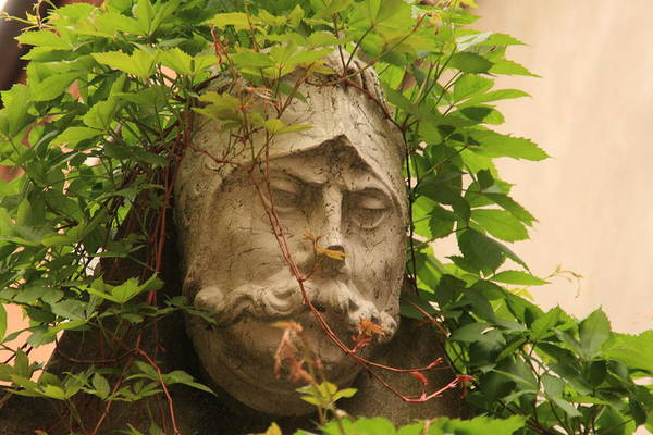 Venice Art Print featuring the photograph Head With Vines by Michael Henderson