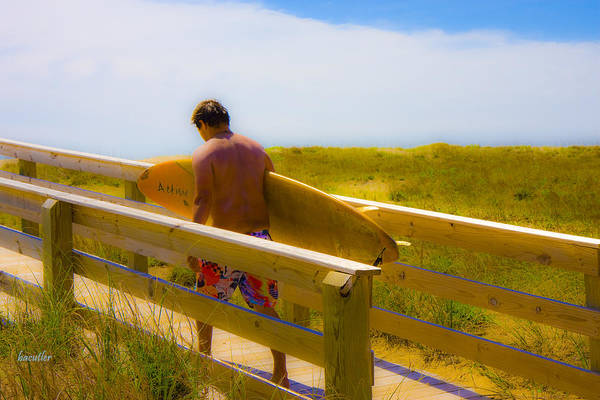 Harkers Island Art Print featuring the photograph Heading Out by Betsy Knapp
