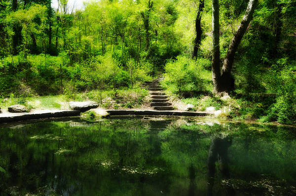Pond Art Print featuring the photograph Hidden Pond At Schuylkill Valley Nature Center by Bill Cannon