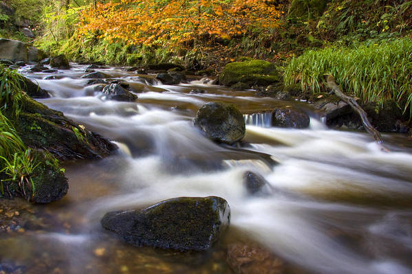 Scotland Art Print featuring the photograph Highland River In Autumn by John McKinlay