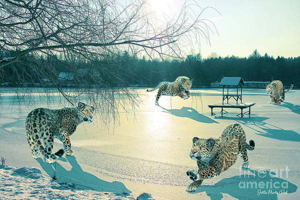 Photo Art Print featuring the digital art Holidays On Ice by Jutta Maria Pusl