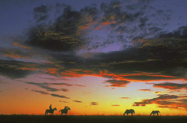 Cowboys Art Print featuring the photograph Home On The Range by Carl Purcell