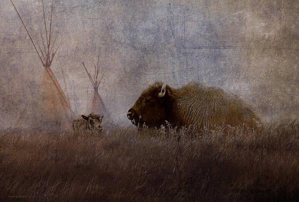 Ron Jones Art Print featuring the photograph Home On The Range by Ron Jones