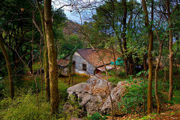 Landscape Art Print featuring the photograph House In China Woods by James O Thompson