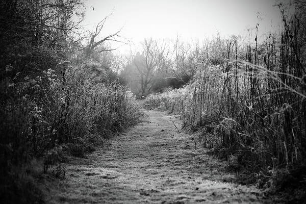 Black And White Landscape Art Print featuring the photograph Icy Trail In Black And White by Brooke T Ryan