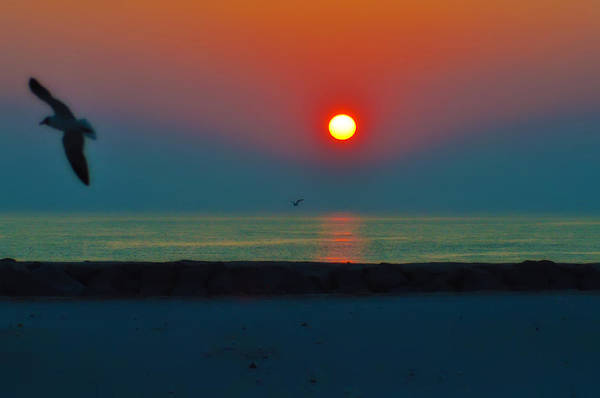 Sunrise Art Print featuring the photograph In The Morning Sun by Bill Cannon
