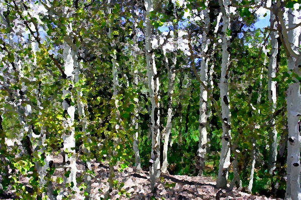 Photo Art Print featuring the photograph Into The Forrest by Mary Gaines