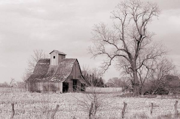 Iowa Art Print featuring the photograph Iowa Farm by Jame Hayes