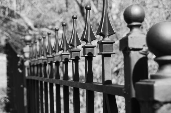 Art Print featuring the photograph Iron Gate by Jessica Roth