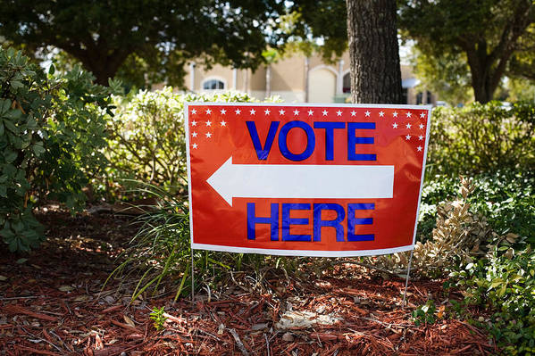 Vote Here Art Print featuring the photograph It Is Your Responsibility by Diane Macdonald