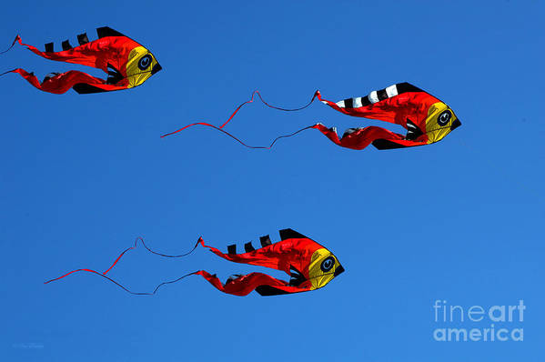 Clay Art Print featuring the photograph It's A Kite Kind Of Day by Clayton Bruster