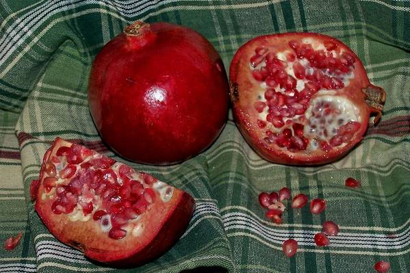 Pomegranate Art Print featuring the photograph Juicy by Vijay Sharon Govender