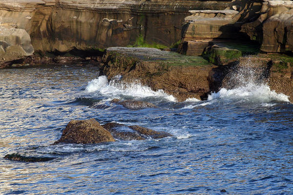 Ocean Art Print featuring the photograph Lajolla Rocks by Margie Wildblood