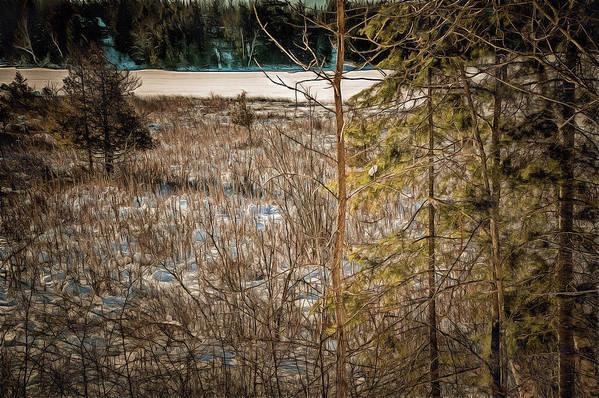 Art Print featuring the photograph Lake Edge by Chroma Photographer