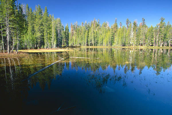 Beauty In Nature Art Print featuring the photograph Lake Reflections Yosemite National Park California by George Oze