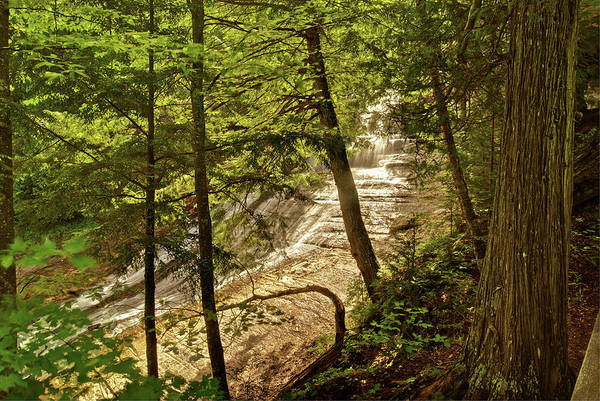 Laughing Whitefish Art Print featuring the photograph Laughing Whitefish Falls 2 by Michael Peychich
